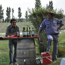 Tim Syrad Chile & Argentina wine tours