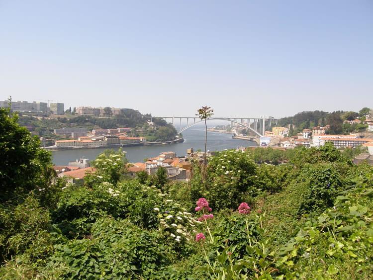 portugal wine tour