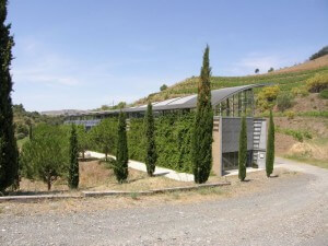 Catalonia Wine Tour Mas Igneus winery