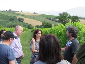 Umbria Wine Tour Dionigi vineyard