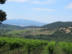 Umbria Wine Tour Montalcino in Southern Tuscany