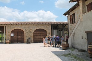 Umbria Wine Tour Terre Margaritelli