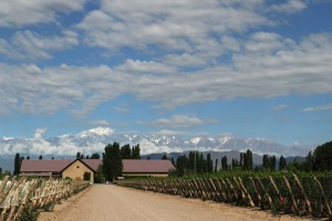 Dominio_del_Plata_winery Argentina Wine Tour
