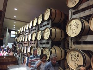 Puglia Wine Tour At Apollonio estate