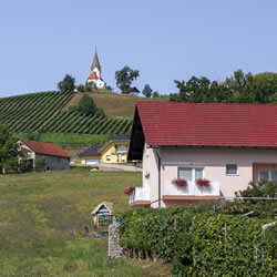 Slovenia wine tour
