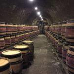 burgundy-wine-tour-2016-barrels-at-domaine-chanson