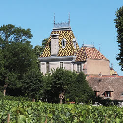Burgundy wine tour