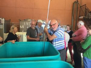 california-wine-tour-2-punching-down-grapes-at-azari