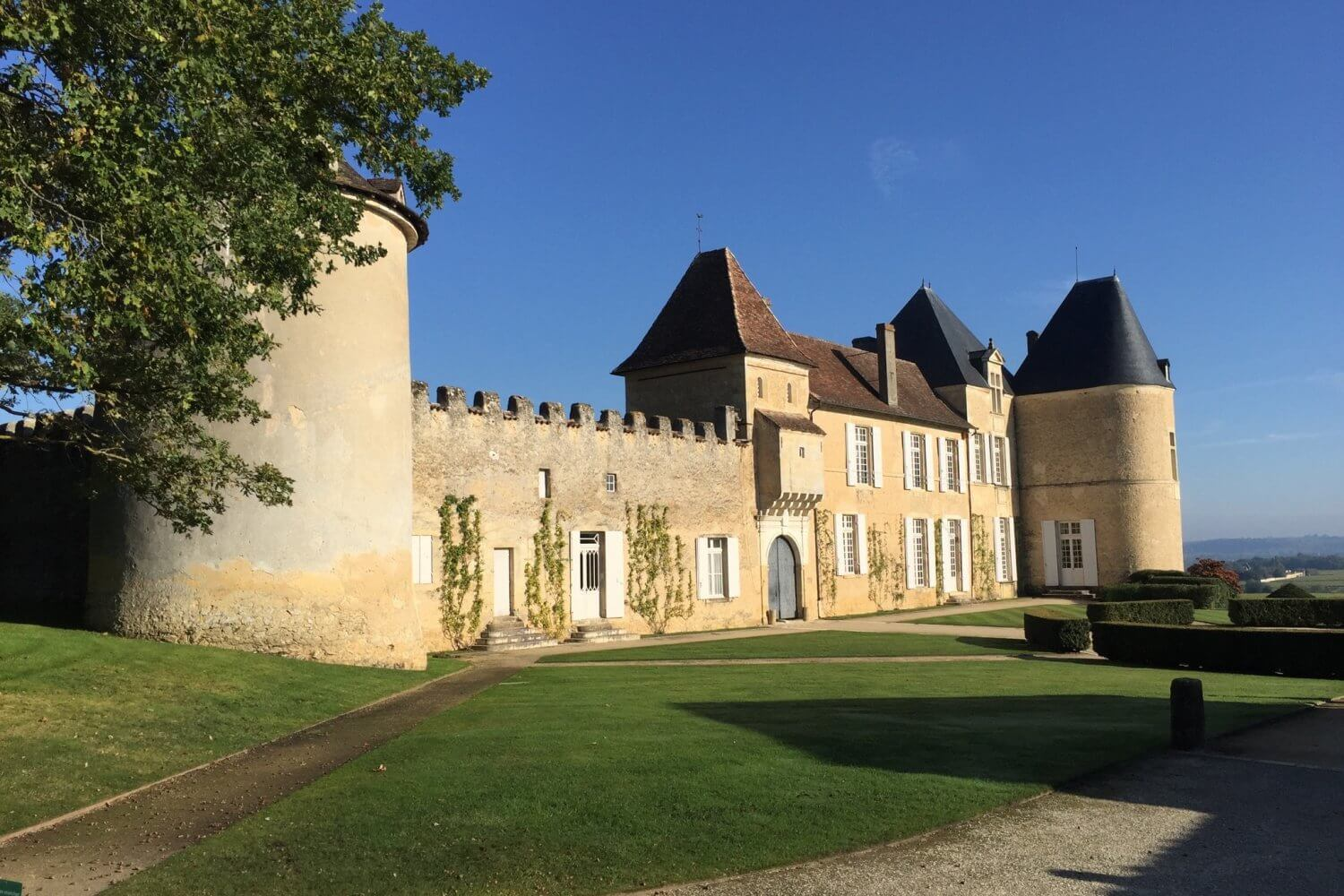 Bordeaux wine tour Ch dYquem