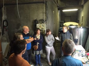 Languedoc Wine Tour
