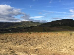 Languedoc Wine Tour Limoux 2