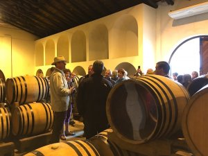 South Africa Wine Tour Hamilton Russell