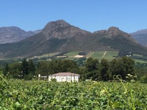 South Africa Wine Tour Chamonix