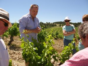 Rhone Valley Tour Hugo Levingston in Morchon vineyard