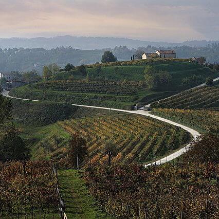 Friuli Venezia Vento Wine Tour Prosecco lanscape
